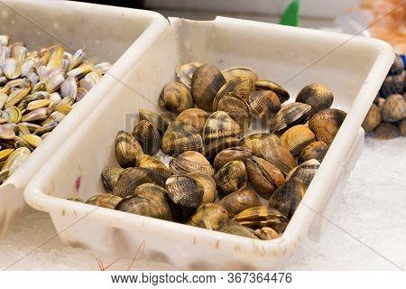 Shellfish In White Plastic Boxs In The Market.