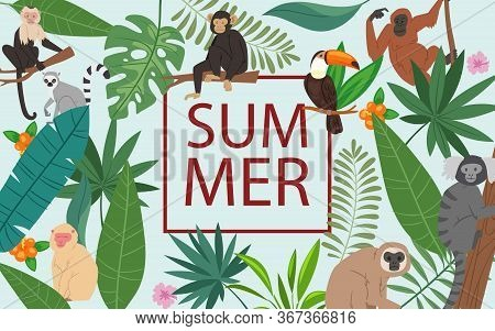 Monkeys And Tropical Leaves And Summer Frame Vector Illustration Poster. Cartoon Jungle Animals, Pal