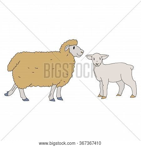 Cute French Farmhouse Sheep And Lamb Vector Clipart. Hand Drawn Shabby Chic Style Country Farm Kitch