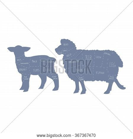 Cute French Farmhouse Sheep And Lamb Cut Chart Silhouette Vector Clipart. Hand Drawn Shabby Chic Sty