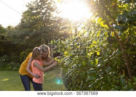 Side view of Caucasian woman and her granddaughter in the garden looking at plants together on a sunny day, the grandmother with her arm around her granddaughter