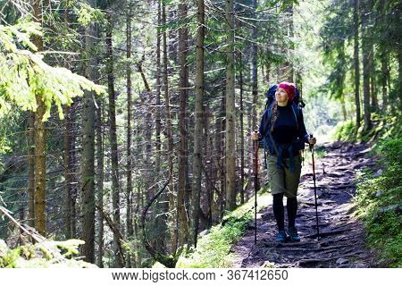 Hiking Girl Is Walking A Mountain Trail In Forest. A Girl With A Tourist Backpack And Trekking Poles