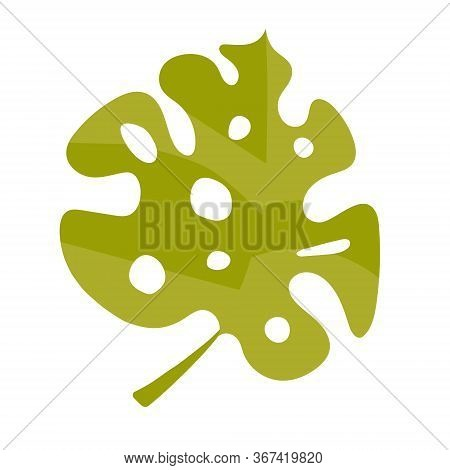 Vector Leaf Monstera Clip Art In Flat Style. Beautiful Green Tropical Plant With Holes In The Leaves