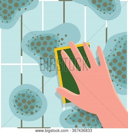 Human Hand Washes Mold From Ceramic Tile. Toxic Mold Spores, Health Hazard. Means For Removing Fungi