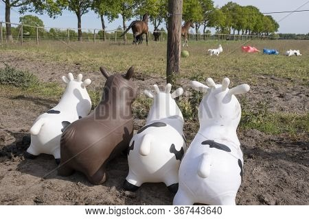 Rubber Inflatable Animal Toys, Are Watching A Herd Of Real Horses And Toy Animals In The Field. Thre