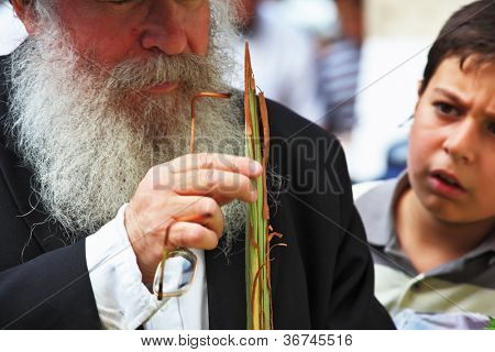 BNEI BRAK - SEPT. 22: Old Orthodox Jew with unidentified boy chooses ritual plant Lula before the holiday of Sukkot. Holiday city market September 22, 2010 in Bnei Brak, Israel