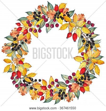 Autumn Wreath With Colorful Leaves, Rosehip, Hawthorn And Common Privet Berries. Watercolor Illustra