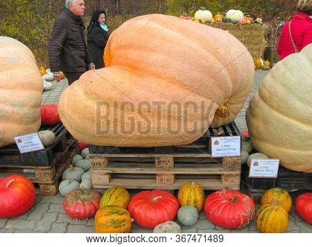 Elstal, Brandenburg, Germany - October 28, 2018: Halloween Vegetable Installation At Modern Outdoor