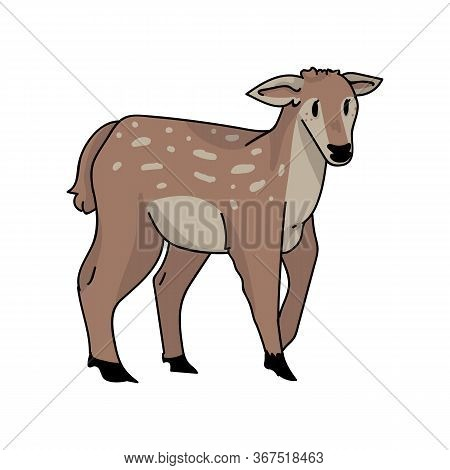 Kawaii Forest Doe Deer Vector Illustration. Buck Deer With Antlers. Childlish Hand Drawn Doodle Styl