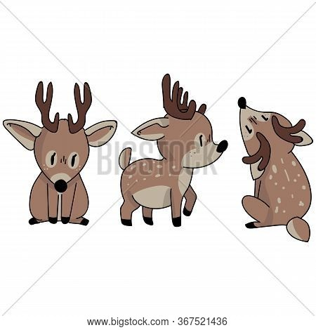 Cute Woodland Deer Set Animal Vector Illustration. Buck Deer With Antlers. Childlish Hand Drawn Dood