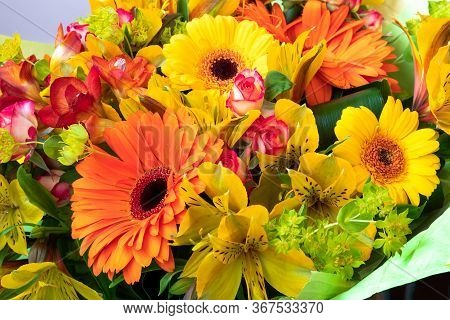 Bright Yellow And Orange Gerbera In A Bouquet Of Flowers. Beautiful Bouquet Gift For The Holiday. Fl