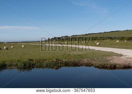 A View Towards The Coastguard Cottages At Cuckmere Haven, Sussex, Uk