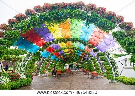 Uae, Dubai - November 20: Multicolor Umbrellas Roof In Dubai Miracle Garden On November 20, 2019