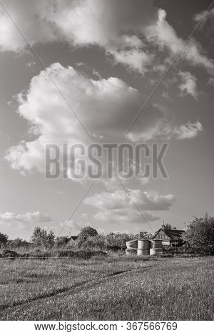 Landscape With Hay Rolls On The Sunset In The Village. Black White.