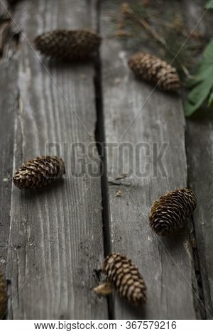 Old Wood Table With Fir Cones Space