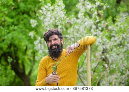 Plants. Garden Scissors. Gardening. Eco-farm. Work In Garden. Bearded Man With Gardening Tools. Work