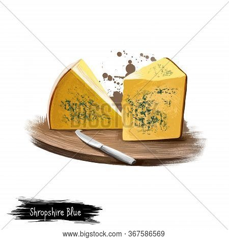 Shropshire Blue Cheese On Wooden Board With Knife Digital Art Illustration Isolated On White. Fresh