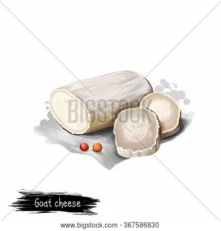 Goat Cheese With Fresh Berries Digital Art Illustration Isolated On White Background. Fresh Dairy Pr