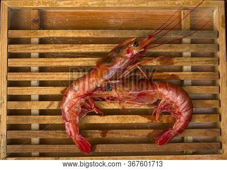 Wooden Tray With Two Prawns. Prawn Is A Spanish Word With Different Meanings In Different Areas. Cru