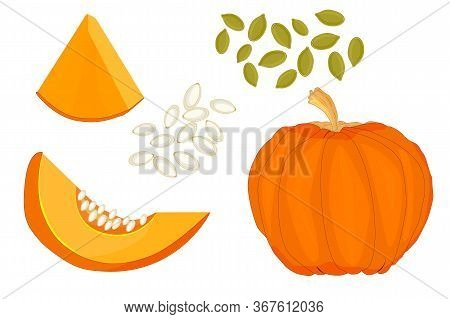 Pumpkin Isolated On White Background. Set Fresh Ripe Gourd Icon. Pumpkin Season. Set Of Whole, Slice