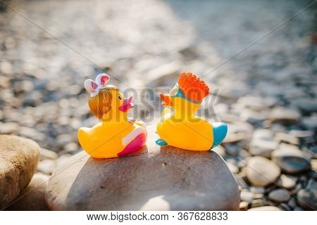 Close Up Of Two Forgotten Yellow Rubber Ducks, Standing On The Stone Of The Sunny Beach