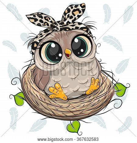 Cute Cartoon Owl In A Nest On White Background