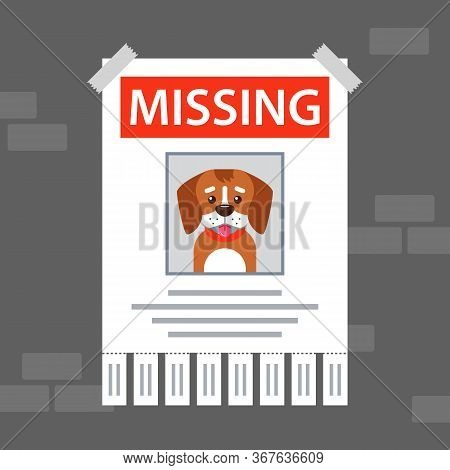 Paper Ad On The Wall About The Missing Dog. Flat Vector Illustration.