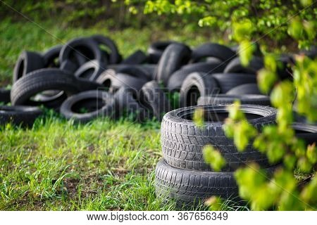 Dump Of Old Used Tires On Fresh Green Grass In The Forest. The Problem Of Ecology And Environmental