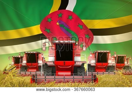 Industrial 3d Illustration Of A Lot Of Red Farming Combine Harvesters On Rural Field With Dominica F