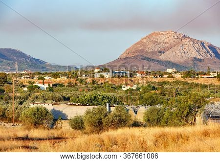 Olive Groves Are Lit By Bright Sunlight In The Valley Against The Backdrop Of Mountain Ranges Near T