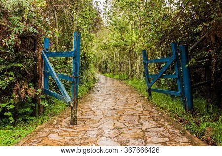Blue Gate Opened In The Humid Tropical Forest In Colombia