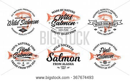 Vector Salmon Vintage Logo