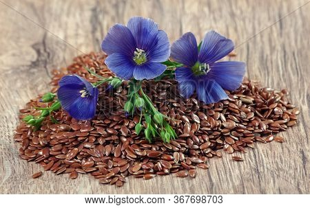 Heap Of Flax Seeds On A Wooden Table. Flax Flowers And Dry Flax Seeds Close-up