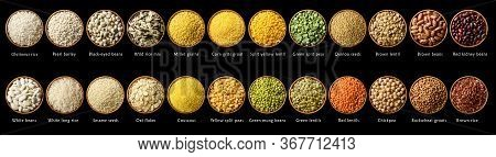 Collection Of Various Cereals And Legumes: Rice, Peas, Lentils, Beans Haricot Millet Buckwheat Chick