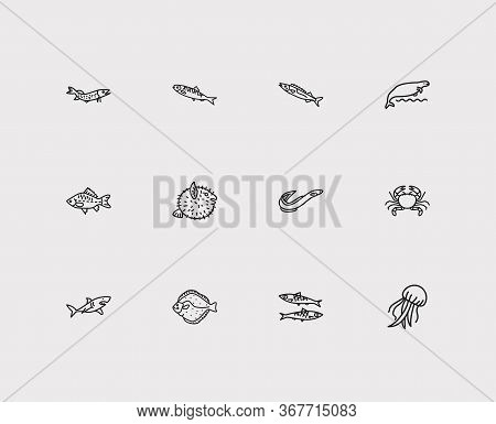 Seafood Icons Set. Crab And Seafood Icons With Gemfish, Jellyfish And Prawn. Set Of Lobster For Web
