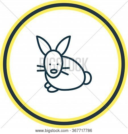 Illustration Of Rabbit Icon Line. Beautiful Zoology Element Also Can Be Used As Bunny Icon Element.