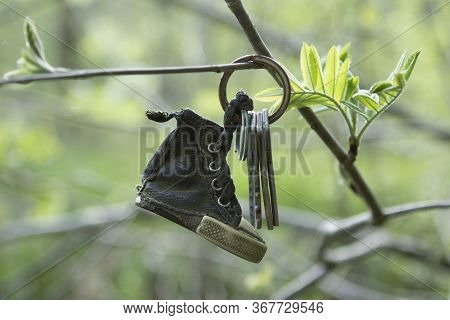 Lost Keys To The Apartment With A Old Keychain, Trinket In The Form Of A Boot Hang On A Tree Branch