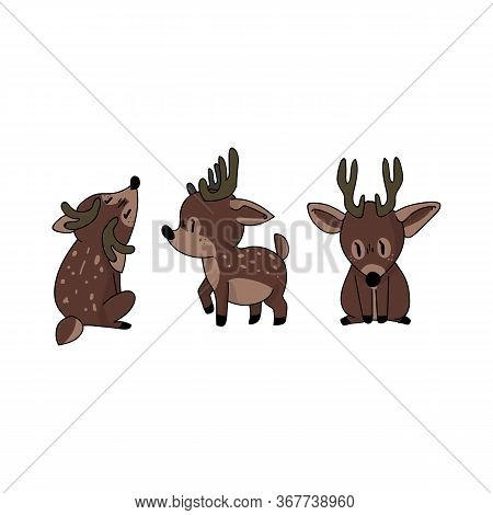 Cute Forest Deer Set Animal Vector Illustration. Buck Deer With Antlers. Childlish Hand Drawn Doodle