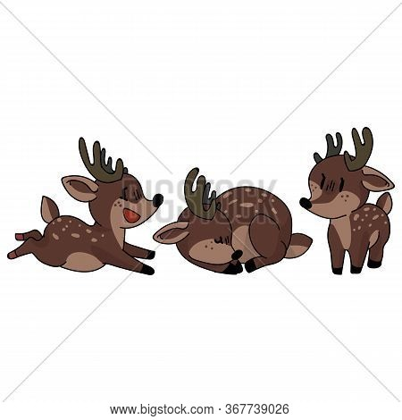 Cute Forest Stag Set Animal Vector Illustration. Buck Deer With Antlers. Childlish Hand Drawn Doodle