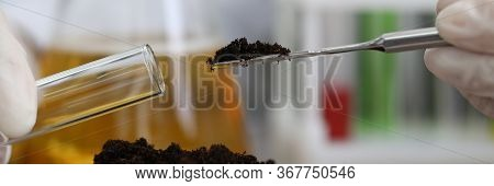 Soil Sampling For Chemical Analysis And Ph Test. Agrochemical Analysis Soil And Greenhouse Soil For
