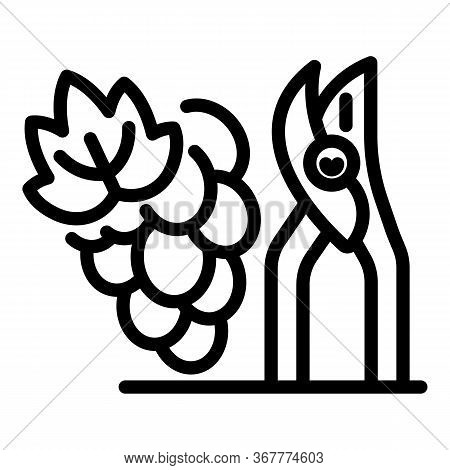 Secateurs And Grapes Icon. Outline Secateurs And Grapes Vector Icon For Web Design Isolated On White