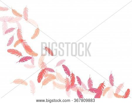 Fashoinable Pink Flamingo Feathers Vector Background. Flying Feather Elements Airy Vector Design. An