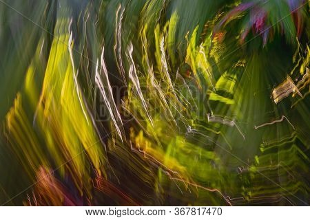 Icm - Intentional Camera Movement - A Technique Producing Colourful Out Of Focus Backgrounds From Pl