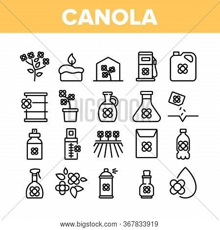 Canola Agricultural Collection Icons Set Vector. Canola Agriculture Flower Field And Pot, Oil And Sp