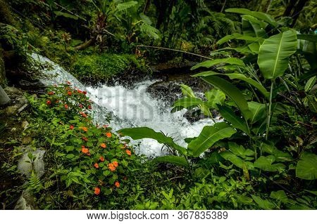 Waterfall Landscape. Beautiful Hidden Waterfall In Tropical Rainforest. Adventure And Travel To Asia