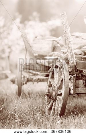 Old Wooden Wagon With Rusty Wheels On The Grass In Spring. Close View. Sepia.