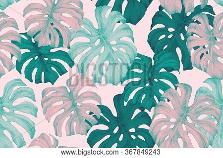 Minimal Tropics Background. Duo Toned Monstera Leaves Seamless Pattern In Turquoise Pink Trendy Colo