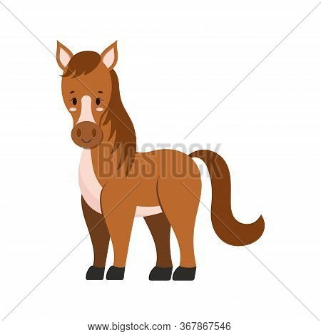 Cute Farm Horse Isolated On White Background. Brown Color Funny Domestic Animal Character With Mane,