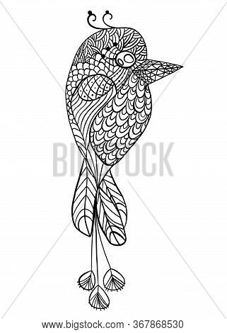Doodle Coloring Page Adults Bird. Vintage Sketch Pattern With Coloring Page For Kids Bird. Fashion A