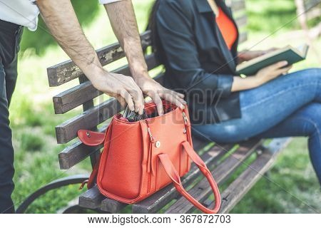 Thief Steals A Female Wallet In The Park